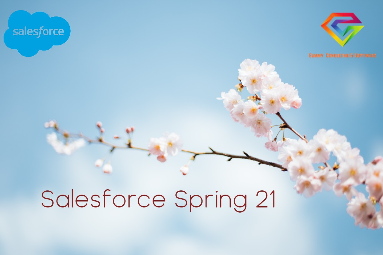 Salesforce Spring 21